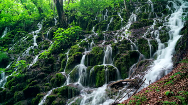 Detailed view of the beautiful waterfalls in Plitvice National Park, Croatia video