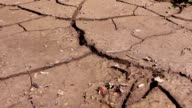 Devastated crops and mud after a flood video