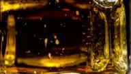 Dew on a Mug of Beer video
