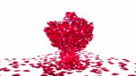 Diamond attracting rose petals, against white video