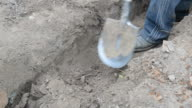 Digging a trench in grey dry soil with a spade video