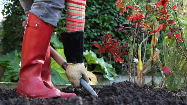 Digging in the Garden (HD1080) video
