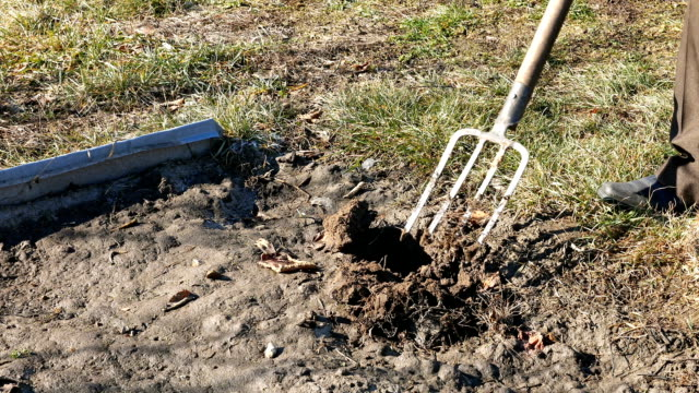 Digging spring earth soil in garden with pitchfork video