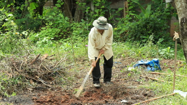 Digging to cultivate. video
