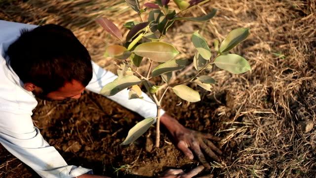 Digging video