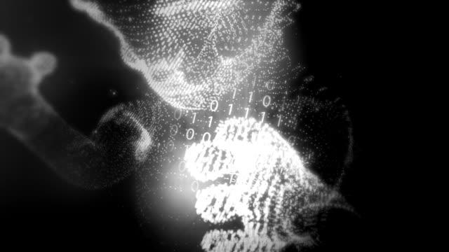 Digital Fetus Zoom video