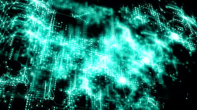 Digital Network video