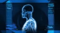 Digital X-Ray Scan of Human (HD) video