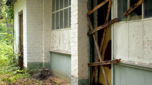 dilapidated house in forest, summer day video
