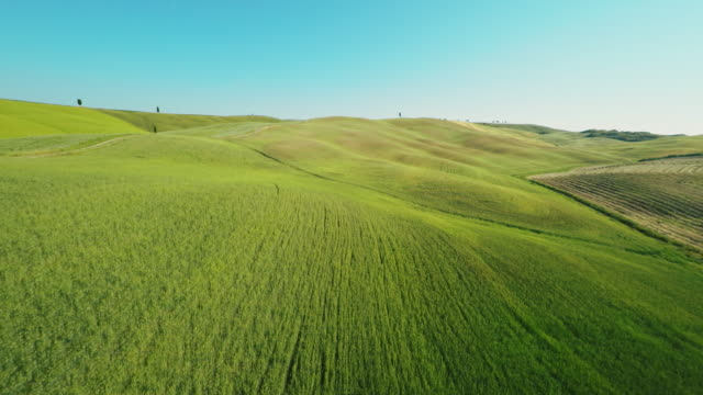 AERIAL Dirt road through green fields in Tuscany video