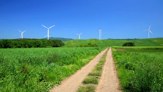 Dirt road through the meadow to the windmills video