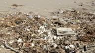 Dirty beach video