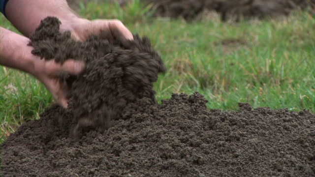 HD: Displaying The Soil video