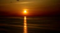 Distant City Skyline Horizon Sunset video