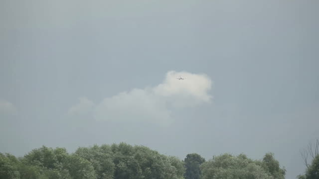 Distant passenger airliner going to land. Clouded grey sky and forest as background video