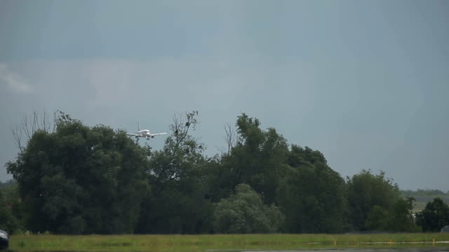Distant passenger airliner landing on runway. Clouded grey sky and forest as background video