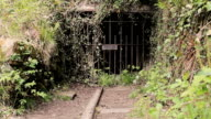 Disused Dark Overgrown Railway Tunnel with Keep Out Railings video