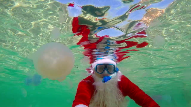 Diver dressed as Santa Claus on Christmas day swimming under water video