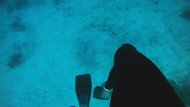 HD SLOW MOTION: Diver Swimming Back To Surface video