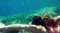SLOW MOTION: Diver swimming underwater video