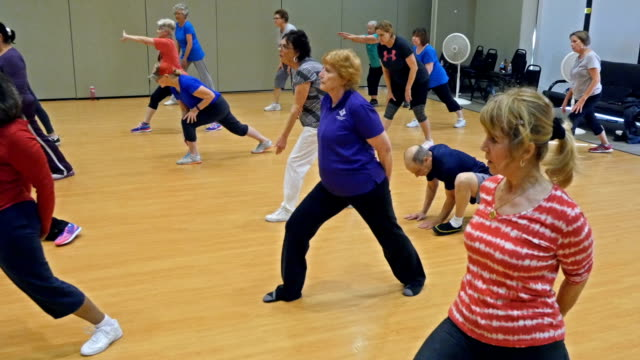 Diverse active seniors in yoga class video