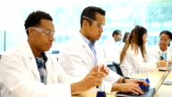 Diverse chemists or chemistry students work on scientific experiment video
