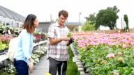 Diverse couple choose flowers at plant nursery video
