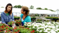 Diverse couple talk with garden center employee about flowers video
