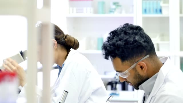 Diverse male and female chemist work on experiment together video