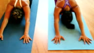 Diverse Mixed Race Group of People Relaxing and Doing Yoga. Wellness and Healthy Lifestyle. video
