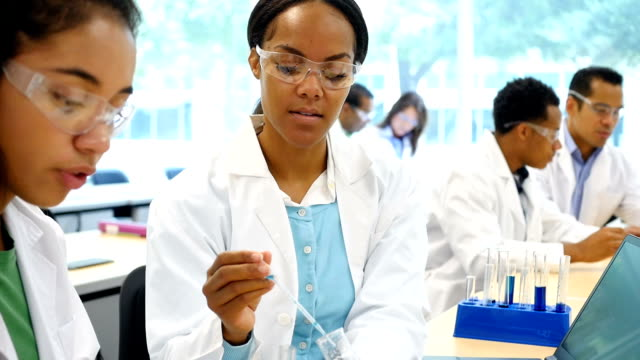 Diverse scientists work together in laboratory video