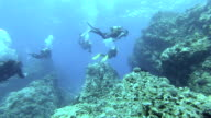 Diving Team video