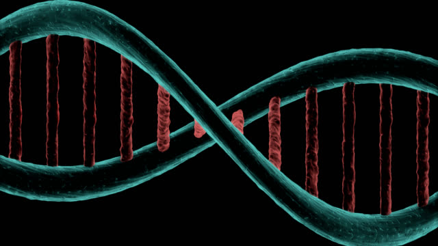 Dna chain in horizontal rotating on black background video