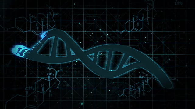 Dna changing form squares video