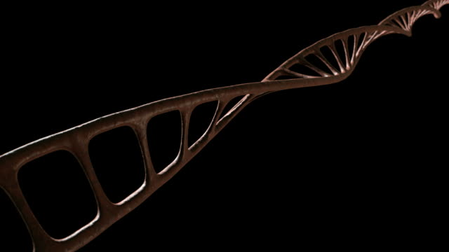 dna single strand animate view 3 new video