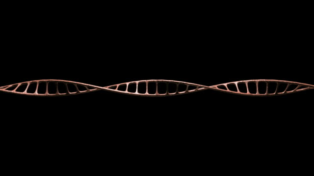 dna single strand animate view 4 new video