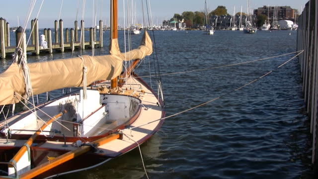 Docked Sailboat video