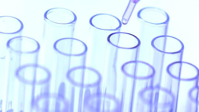 doctor or scientist testing in Chemistry video