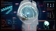 Doctor touching digital screen, Scanning Brain in digital display dashboard. X-ray view video
