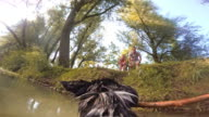 POV Dog bringing stick from river to owners video