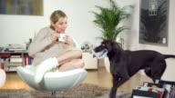 Dog brings Newspaper video