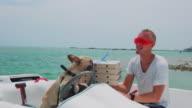 Dog captain 4K video