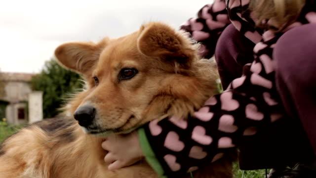 Dog Cuddled By Cute Girl video