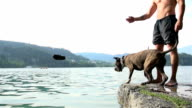 Dog jumping in to lake after slipper slow motion video