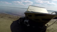 A dog rests under the boat on the shore. lena River video