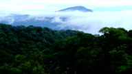 Doi Inthanon National park in the sunrise at Chiang Mai Province, Thailand video