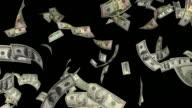 Dollar Bills #2 HD video