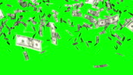 dollars bills falling chroma key video