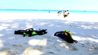 HD Dolly: Diving equipment video