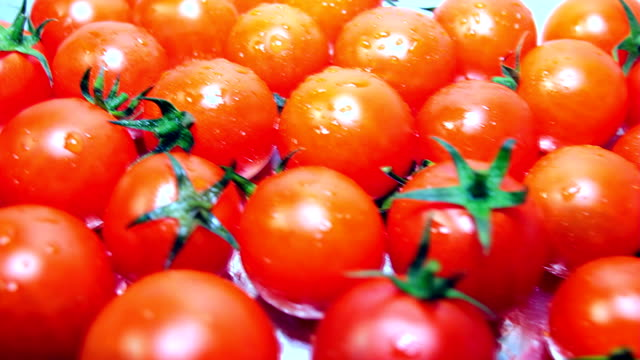 Dolly: Fresh Red Tomatoes video